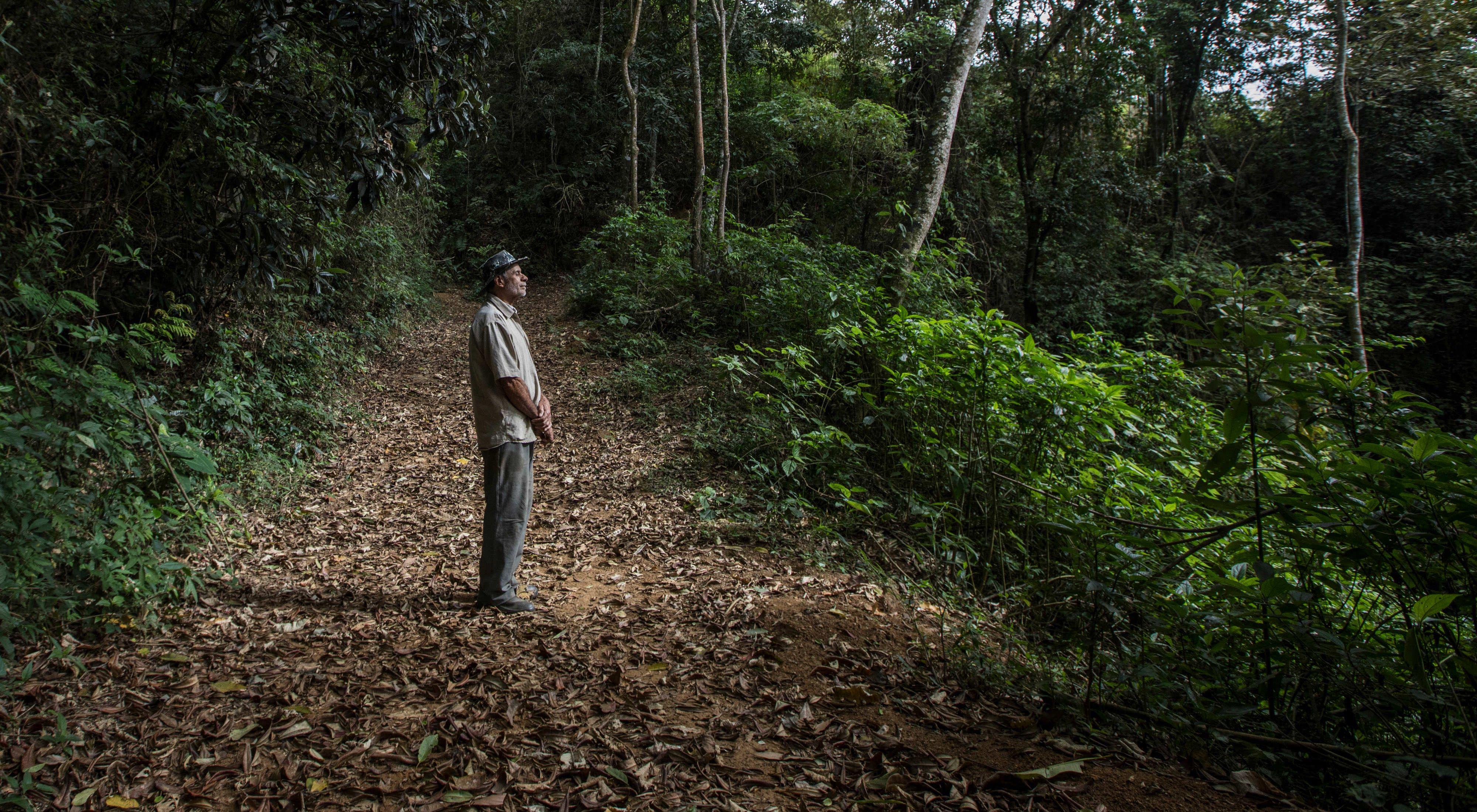 Itamar da Silva em uma trilha na área de reserva legal do sítio de sua família em Afonso Cláudio, no Espírito Santo.