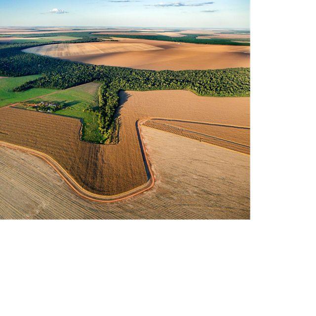 Imagem aérea de produção de soja no Cerrado do Mato Grosso.