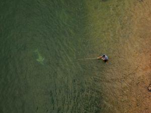 Boto do Araguaia (Inia araguaiaensis) nadando próximo a um pescador tradicional que usa uma vara de bambu fisgar peixes no Rio Tocantins, em Imperatriz-MA.