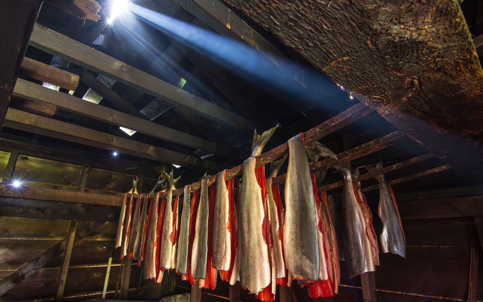 Salmon filets are prepared and hung in a smokehouse in Hydaburg on Prince of Wales Island in Southeast Alaska.