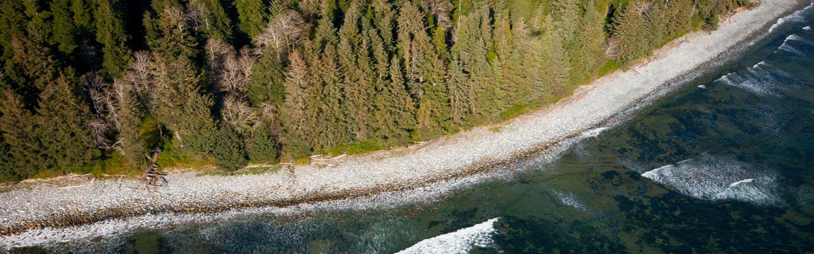 Clayoquot声音鸟瞰图,在温哥华海岛西海岸在不列颠哥伦比亚省加拿大省的。