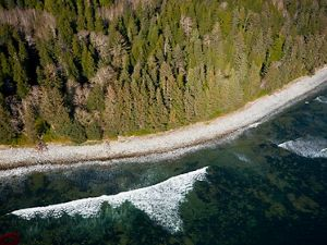 aerial view of waves crashing on a beach near a forest