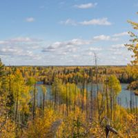 Canada's Boreal Forest in Sheridon, Manitoba