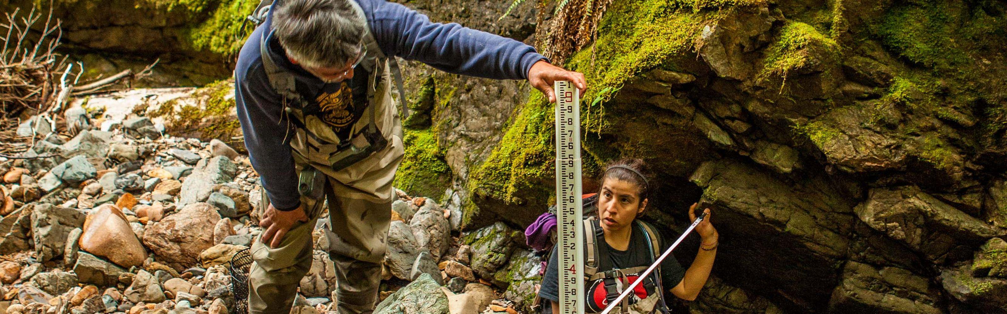 Members of the Haida tribe perform fish surveys on streams at Keat's Inlet on Prince of Wales Island, Alaska.