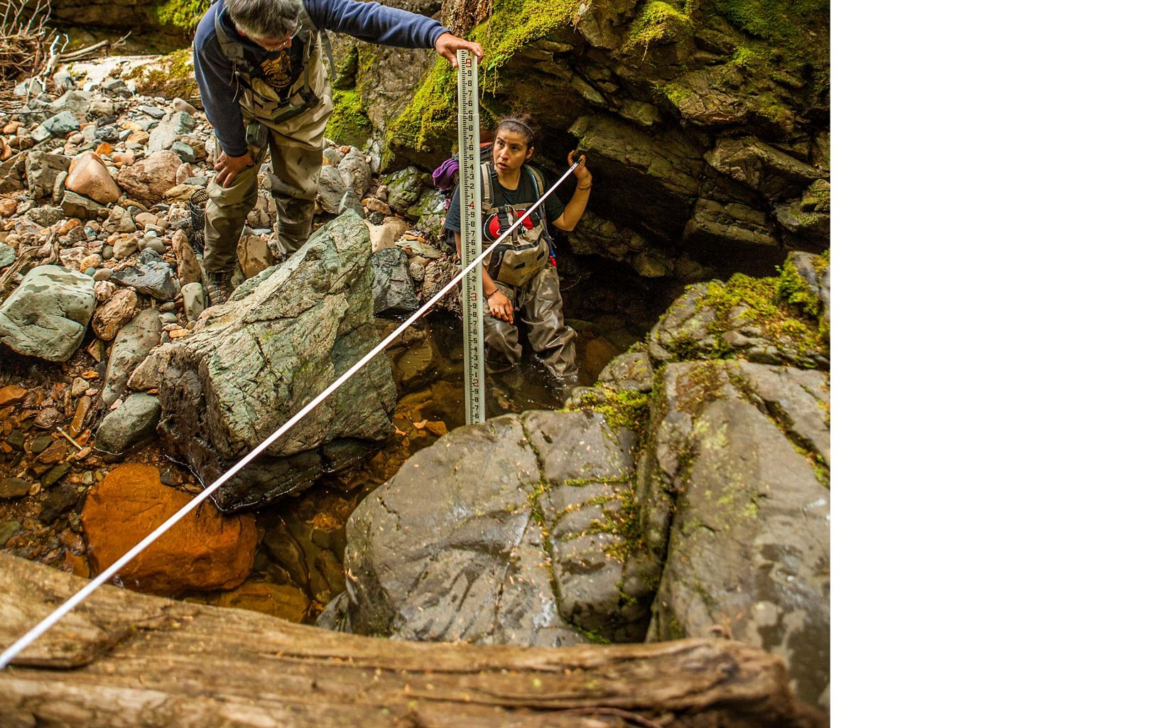Members of the Haida tribe perform fish surveys on streams at Keat's Inlet on Prince of Wales Island, Alaska.