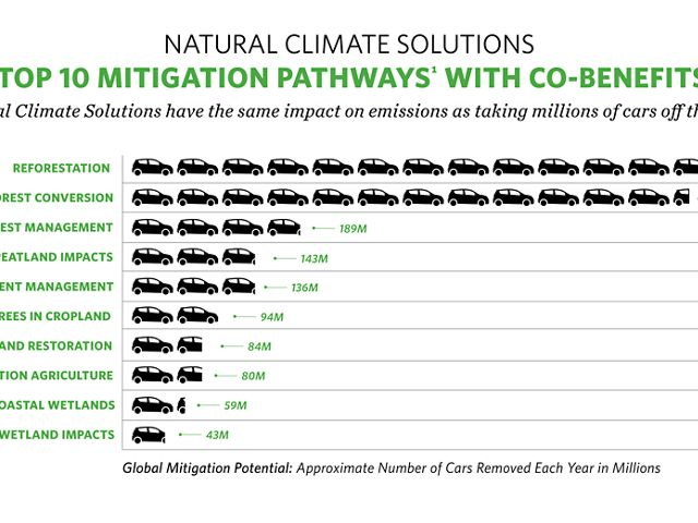 horizontal infographic about natural climate solutions
