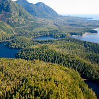 An aerial view of Clayoquot Sound, on the west coast of Vancouver Island in the Canadian province of British Columbia.