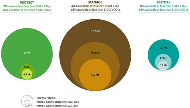 Graphic showing cost effectiveness of natural climate solutions in Canada
