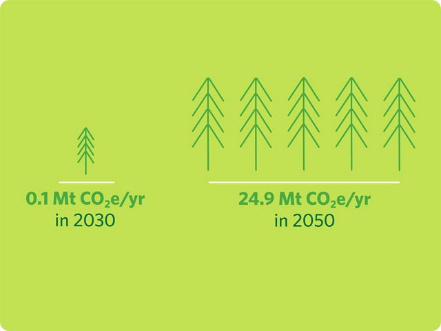 graphic showing the mitigation potential of planting trees in Canada in 2030 and in 2050