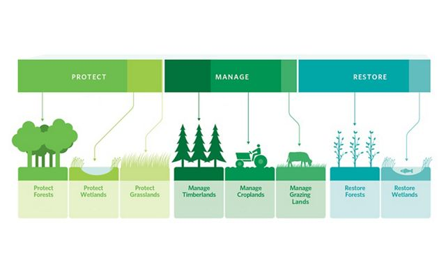 A graphic illustrating the framework of natural climate solutions - protect, manage, restore.