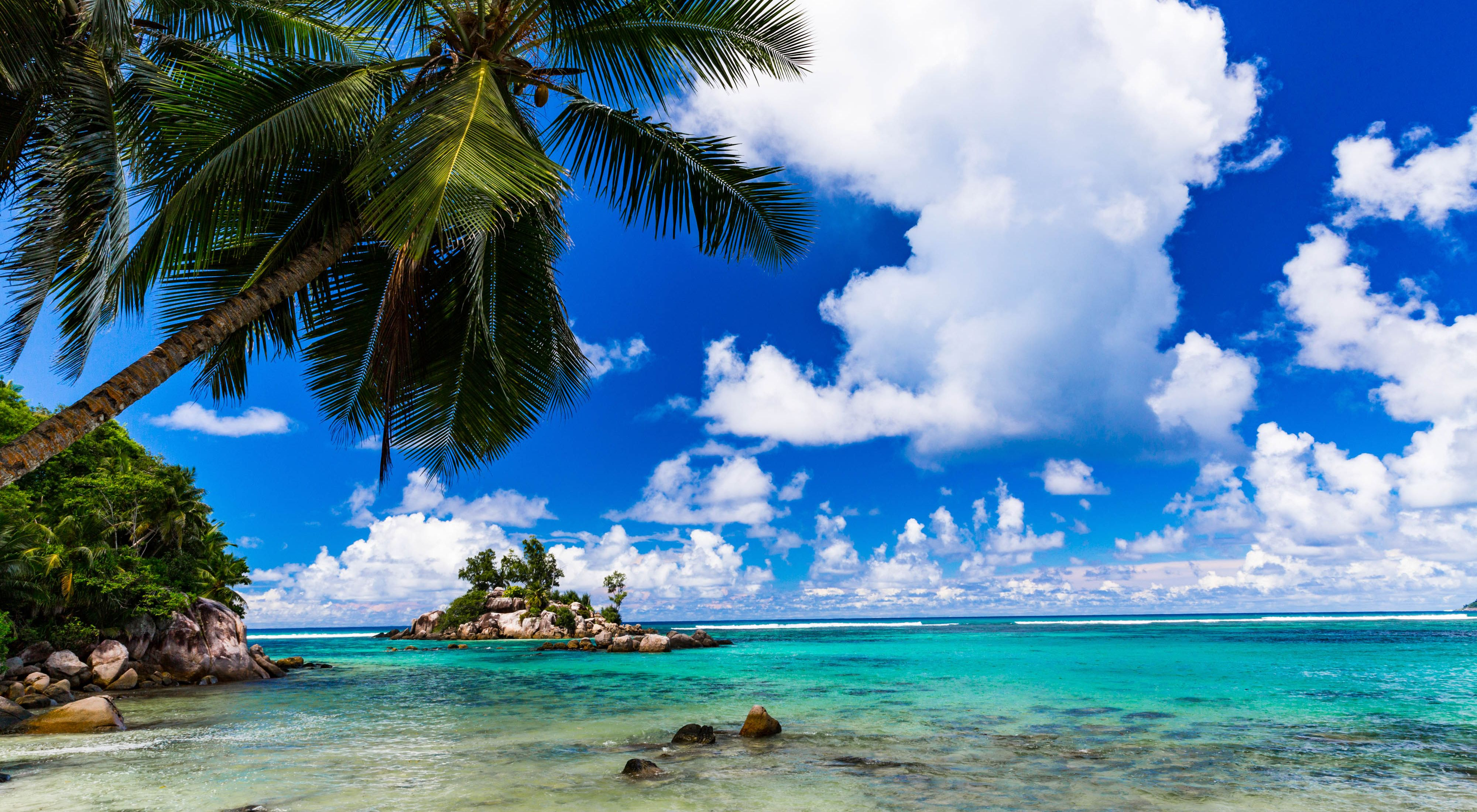 TNC's NatureVest, gathered enough impact capital and philanthropic grants to help Seychelles restructure nearly $30 million of its debt.