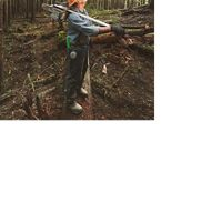 Russell Shippey, a timber faller, cutting corridor to pull out trees in second growth forest at the Ellsworth Creek Preserve in Washington state.