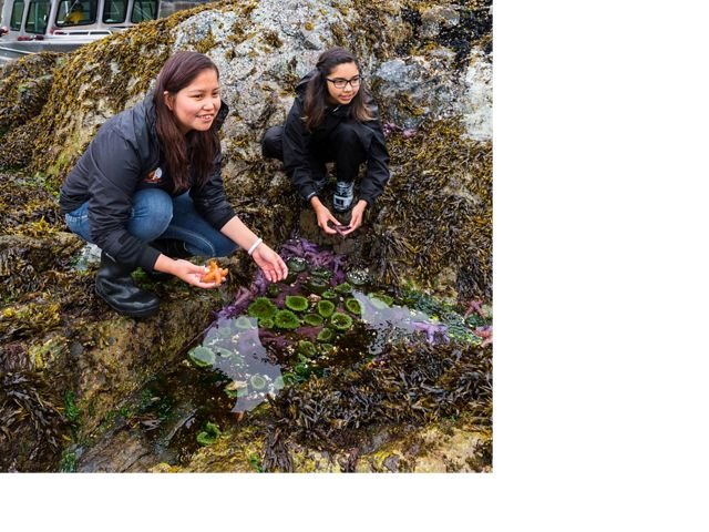 Exploring tidepools during a break from harvesting traditional food including urchin, fish, sea asparagus, and berries near Klemtu, BC, Canada.