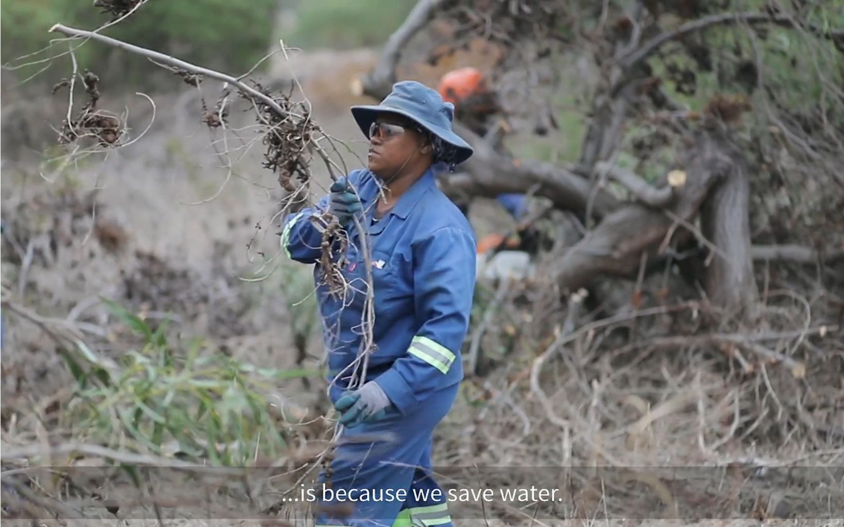 In conjunction with the launch of the new Waterless hair care collection in South Africa, P&G has stepped in to support this critical work with a $100,000 contribution that will help TNC's efforts to return 55 billion liters of water to the region's supply system.