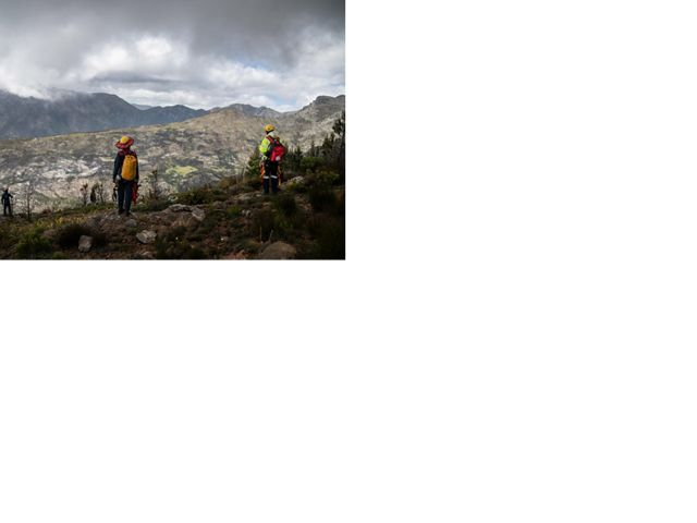 Rope technician on their way up a mountain to the pine removal site.