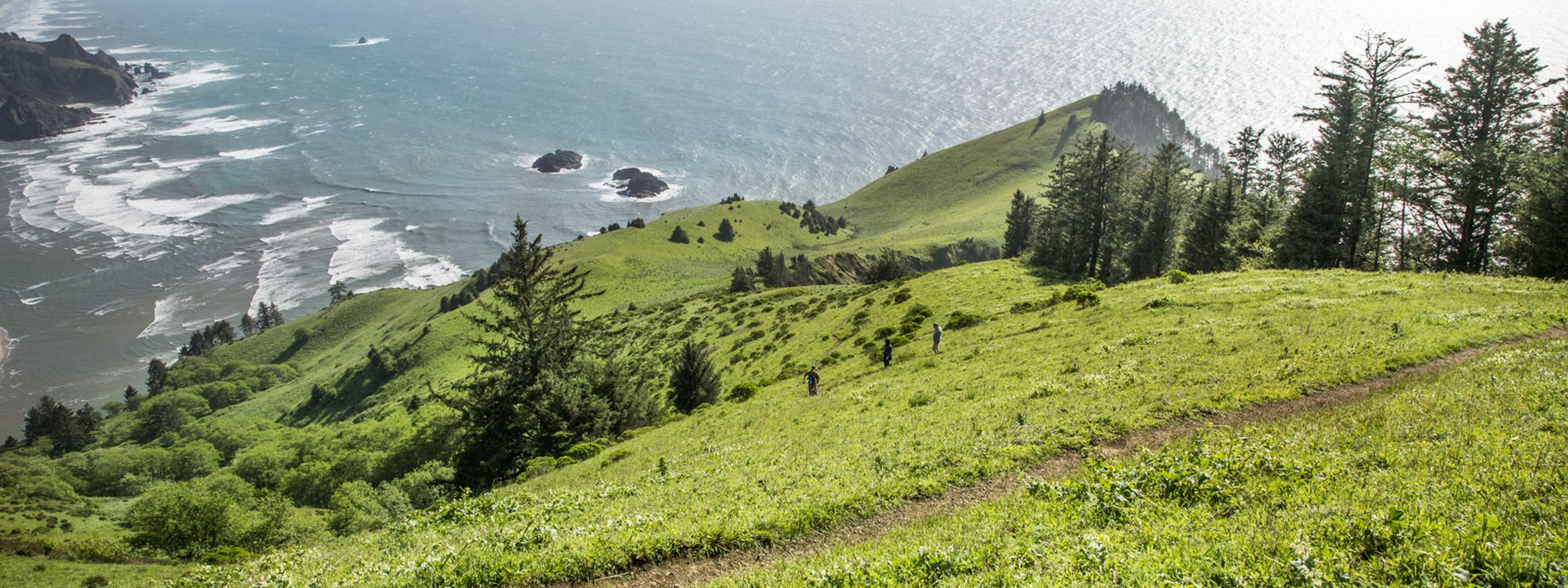 Headland of TNC's Cascade Head Preserve near Lincoln City, Oregon.