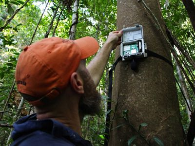TNC lead scientist Eddie Game deploys an acoustic recorder in Papua New Guinea