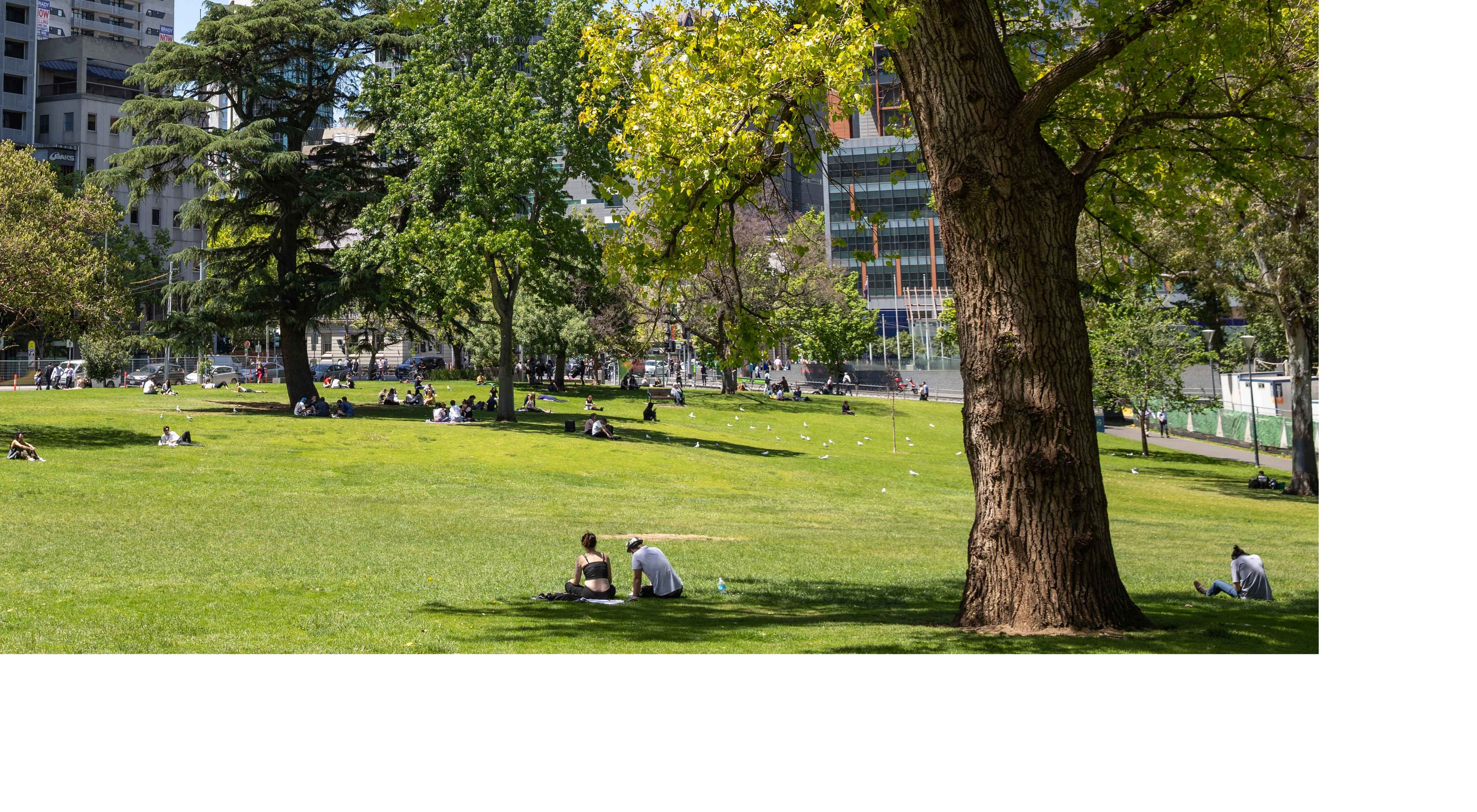 is developing a plan to ensure that future development brings with it more parks and nature.