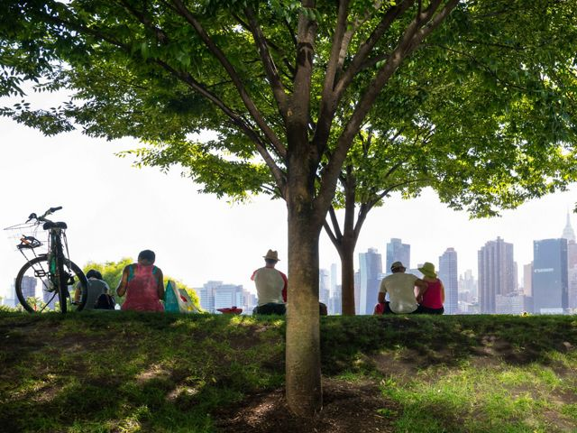 Photo of picnickers sitting on the grass at a Queens Park, city buildings in background.