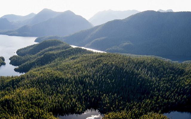 Clayoquot Sound on Vancouver Island in British Columbia, Canada.