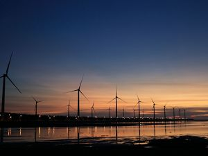 Wind turbines on a shoreline at dawn.