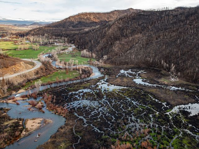 A hillside covered in burned trees and denuded soil, with interweaving streams in a valley below.