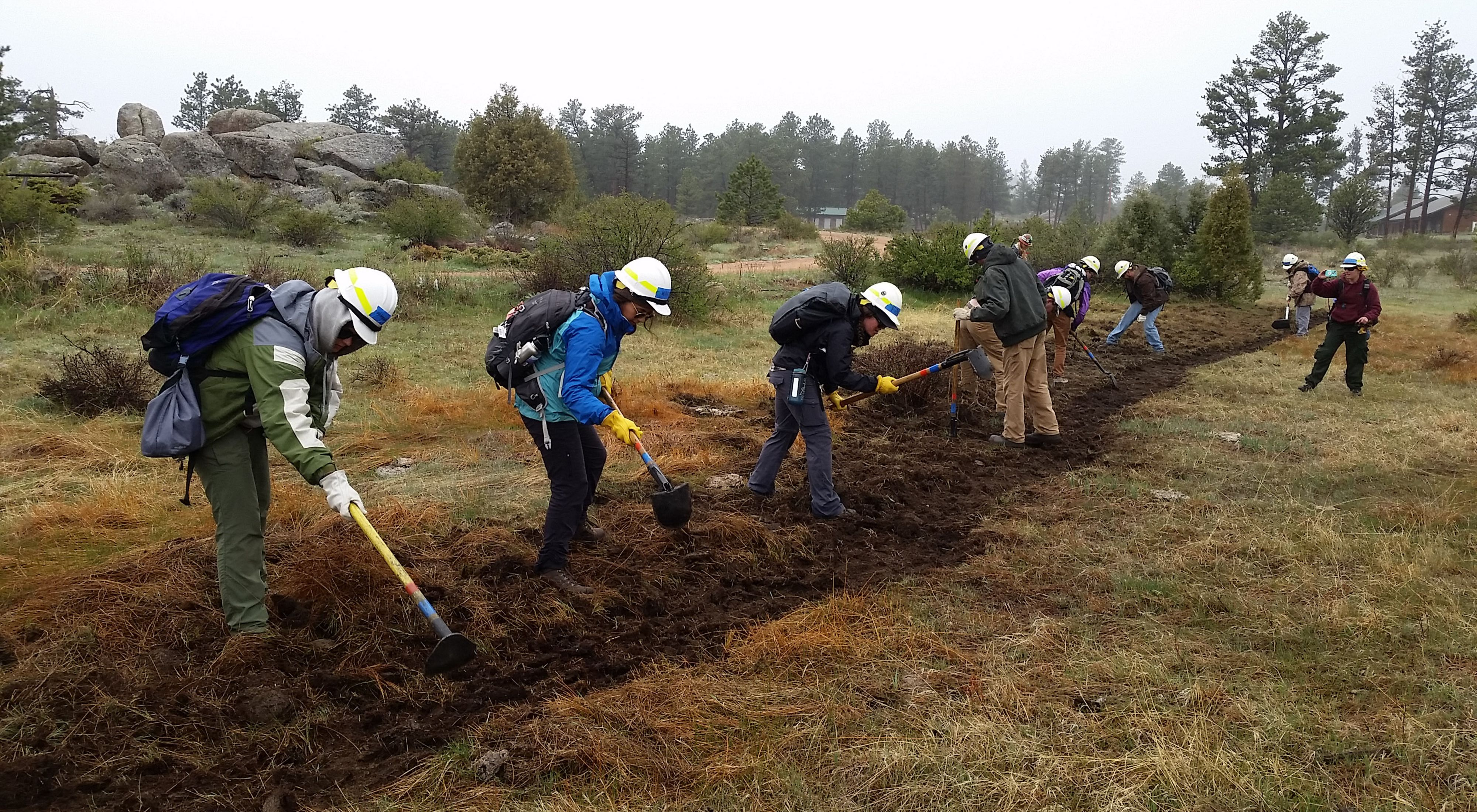 Colorado staff are working to build a qualified volunteer staff who can assist the TNC in forest restoration and fire projects.