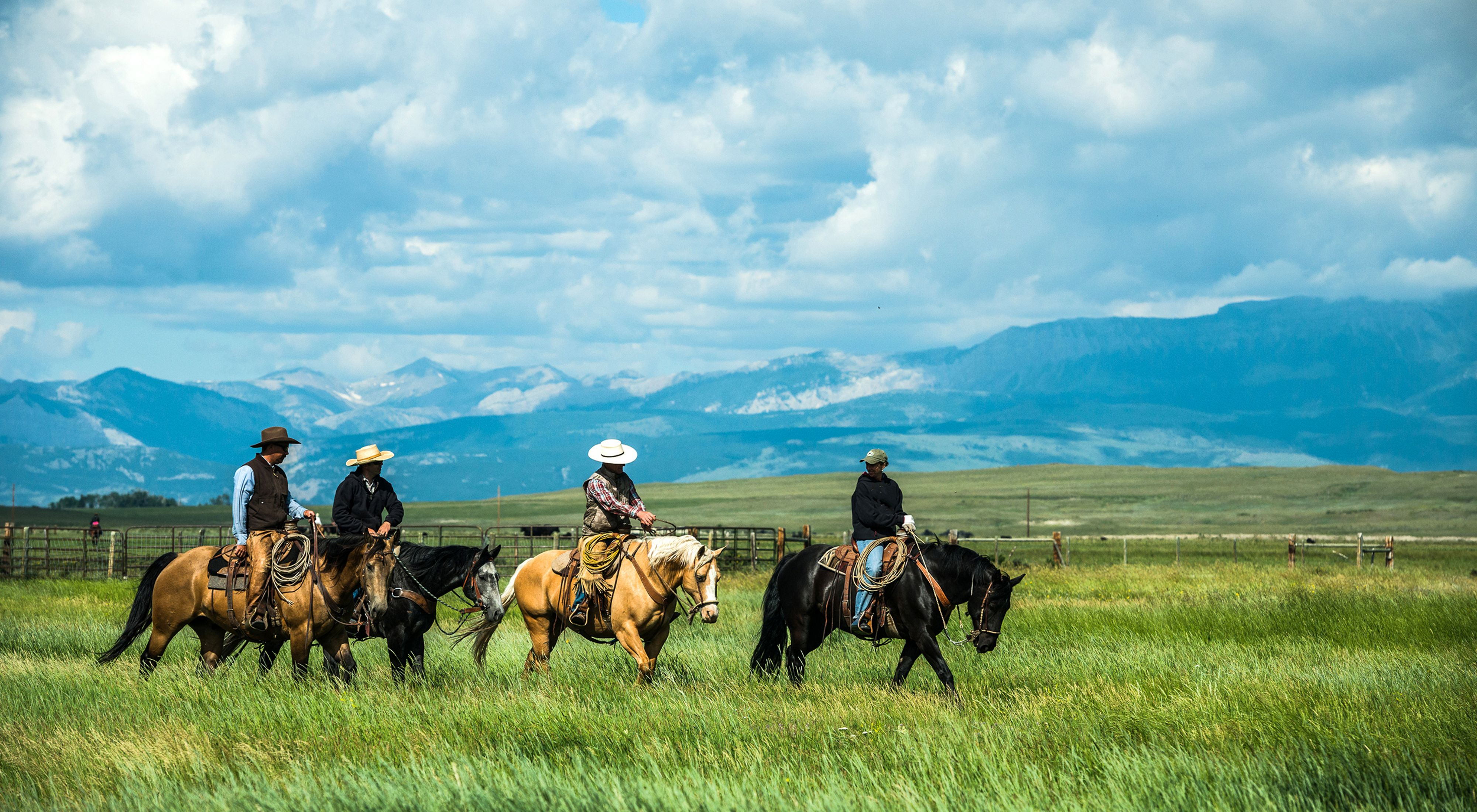 Cowboys riding on horses with a mountain landscape and blue skies behind them.
