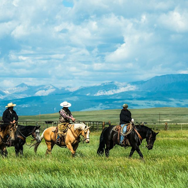 Ranchers riding across green pasture with mountains in the background.