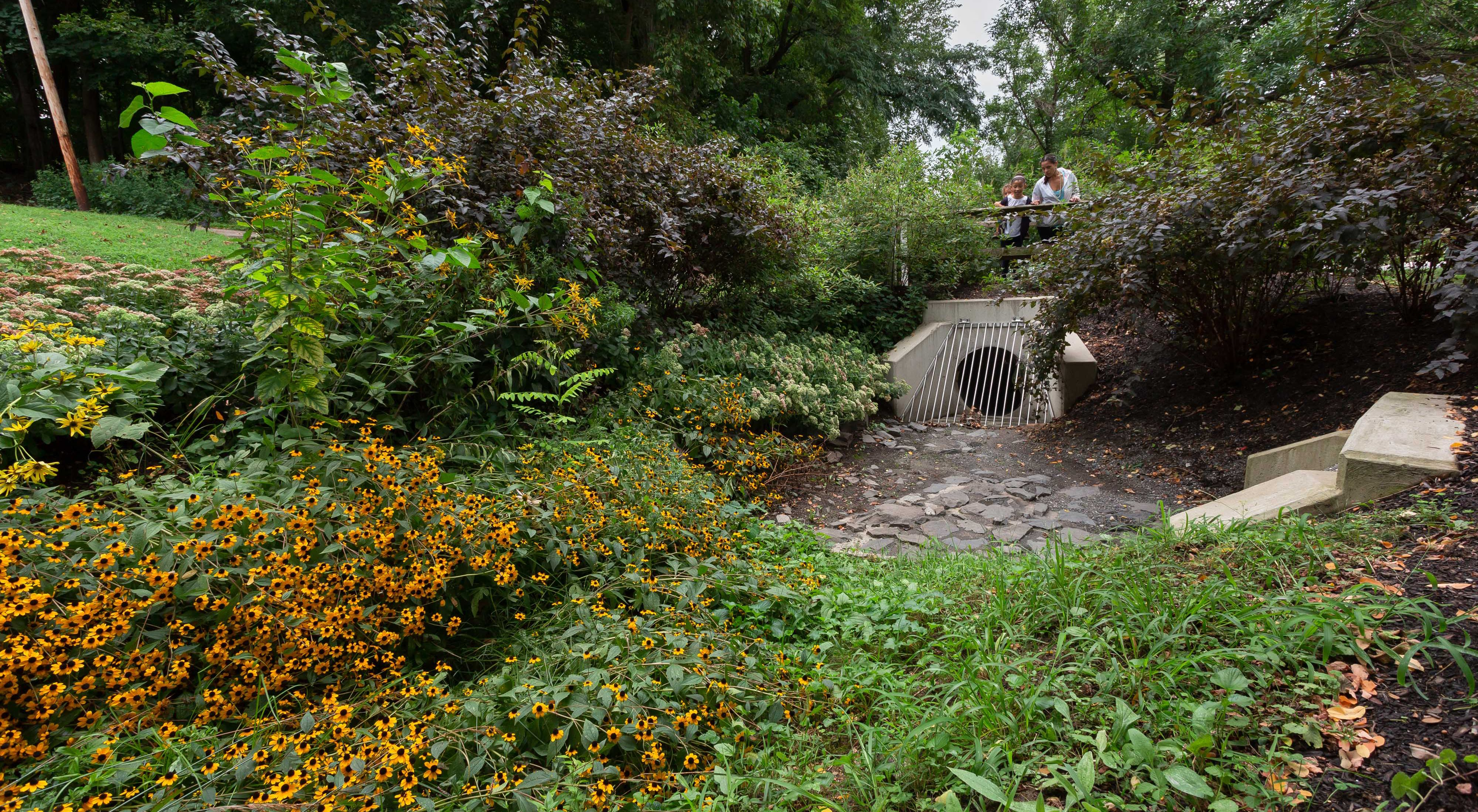 a culvert sitting under a bridge is surrounded by plants and flowers