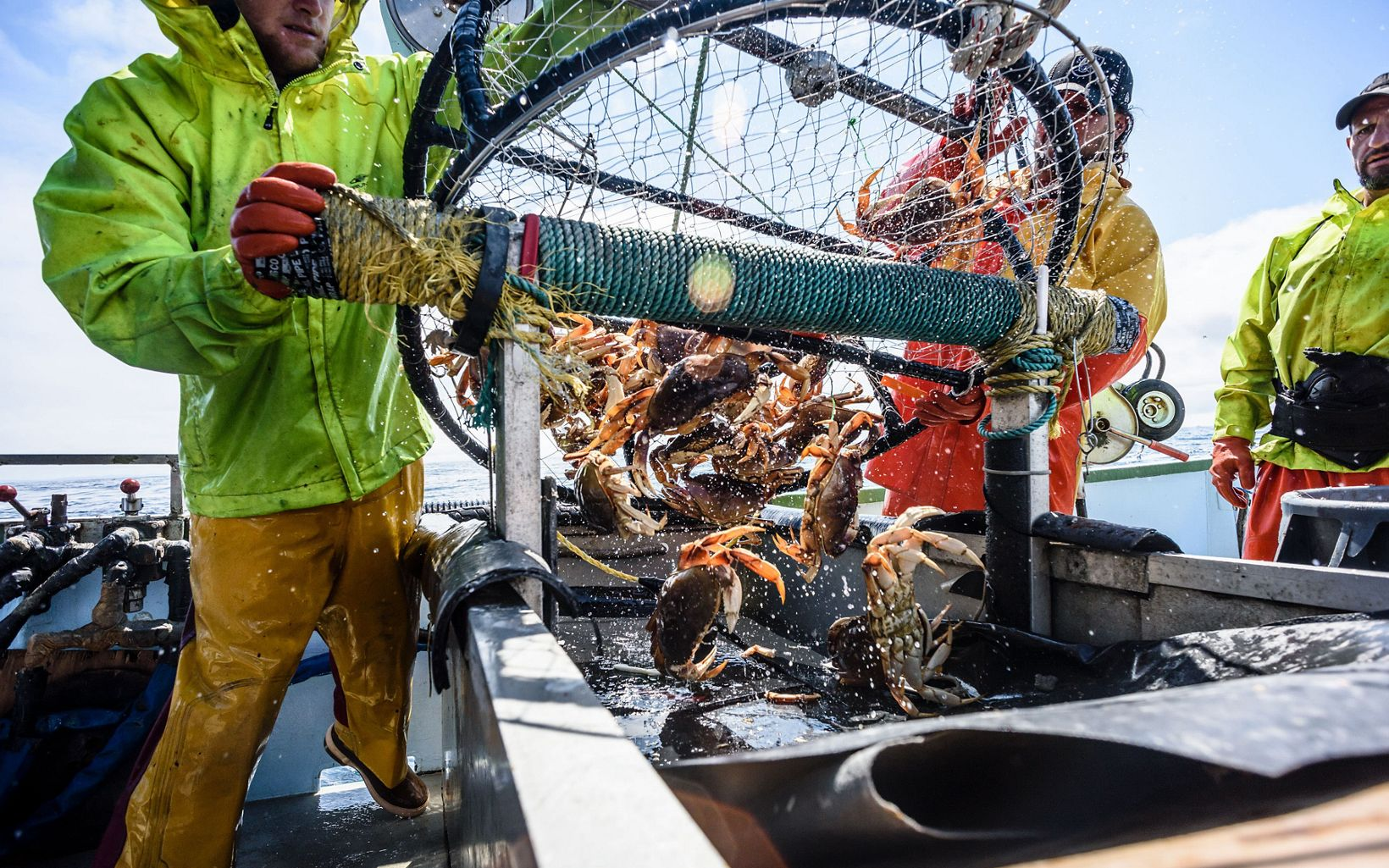 In the face of this challenge, leaders in the crab fishery are committed to working with partners like The Nature Conservancy to reduce entanglements.