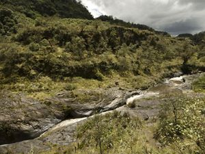 The Pita River flows through the buffer zone of the Cotopaxi National Park in Hacienda Santa Rita.