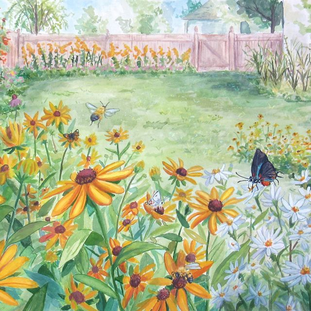 Watercolor illustration showing a backyard garden of native plants. A brown butterfly sits on a yellow flower in the left foreground. A ruby-throated hummingbird hovers next to a flower on the right.