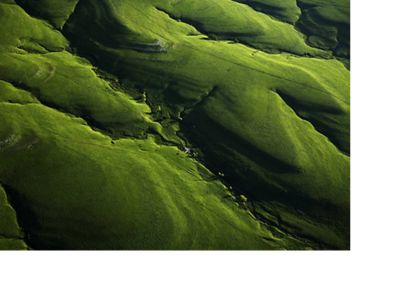 Aerial view of lush green hills