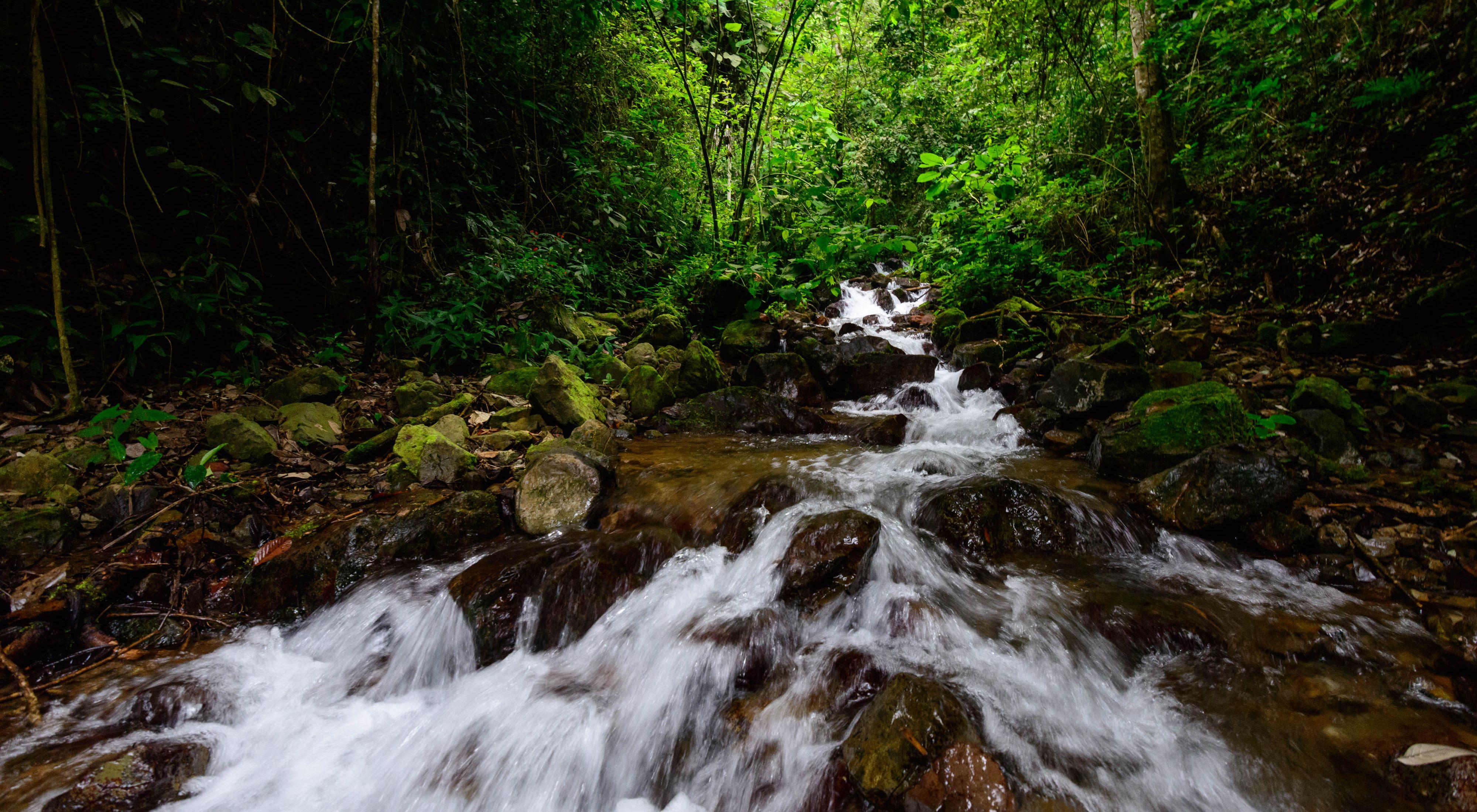 Colombia, Valle del Cauca, Municipio de Pradera, quebrada agua clara en la via a la vereda el arenillo