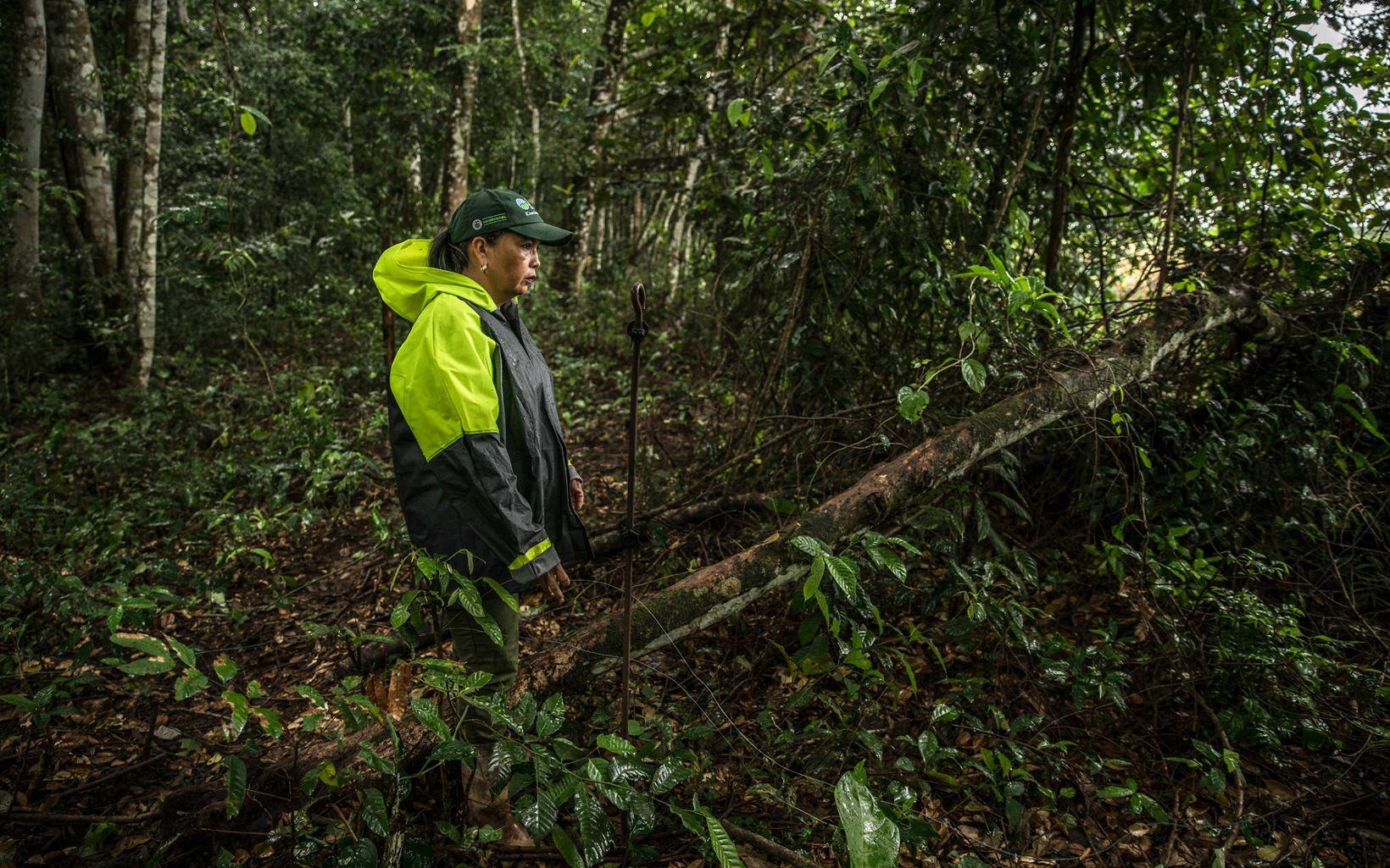 Blanca tiene claro que proteger su bosque la ayuda a ella, a sus animales y a la vida que ahí existe.
