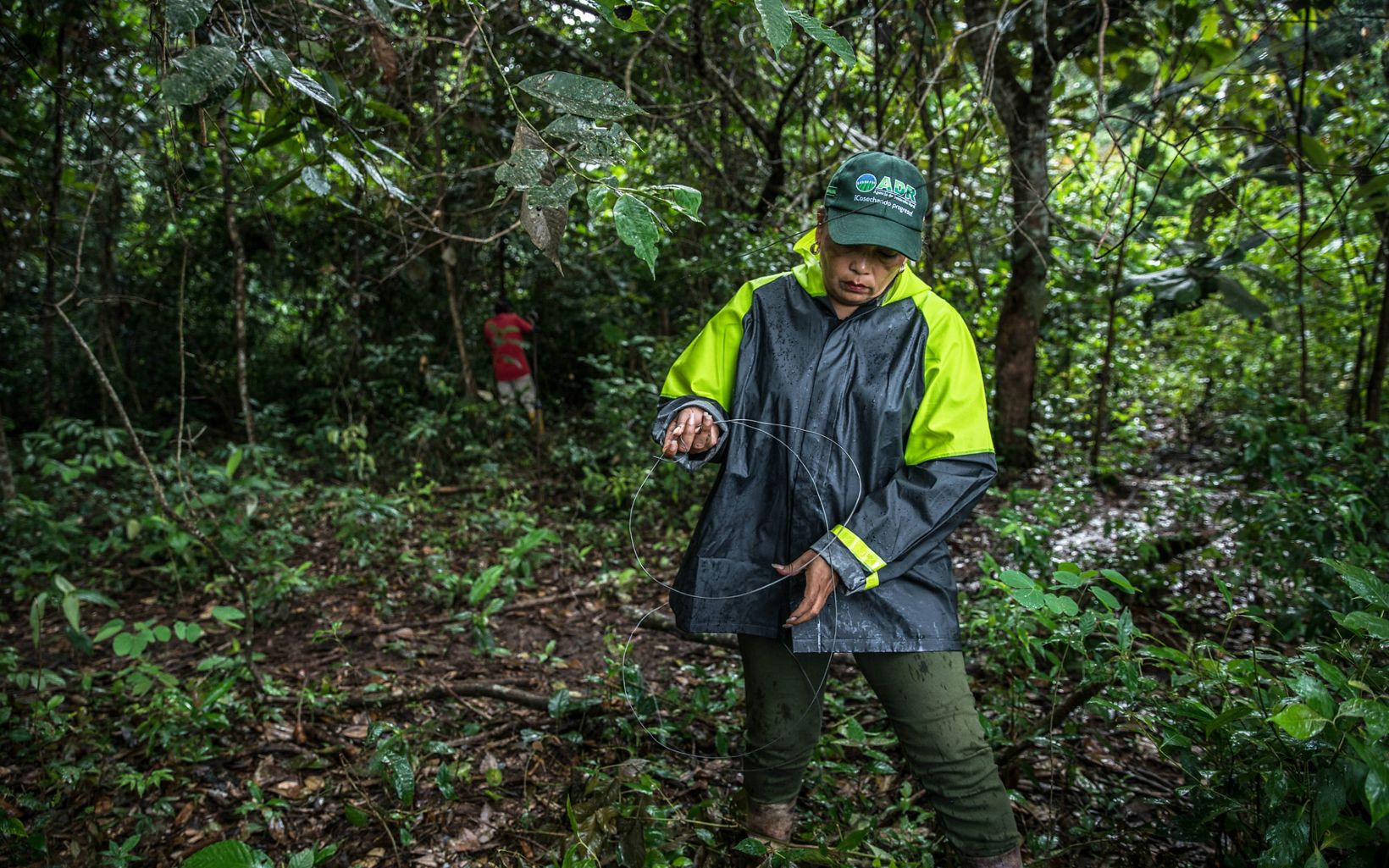 La ganadera instala sus propias divisiones para evitar que su ganado se meta al bosque conservado justo dentro de su predio.