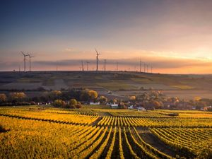 Photo of wind turbines in Germany.