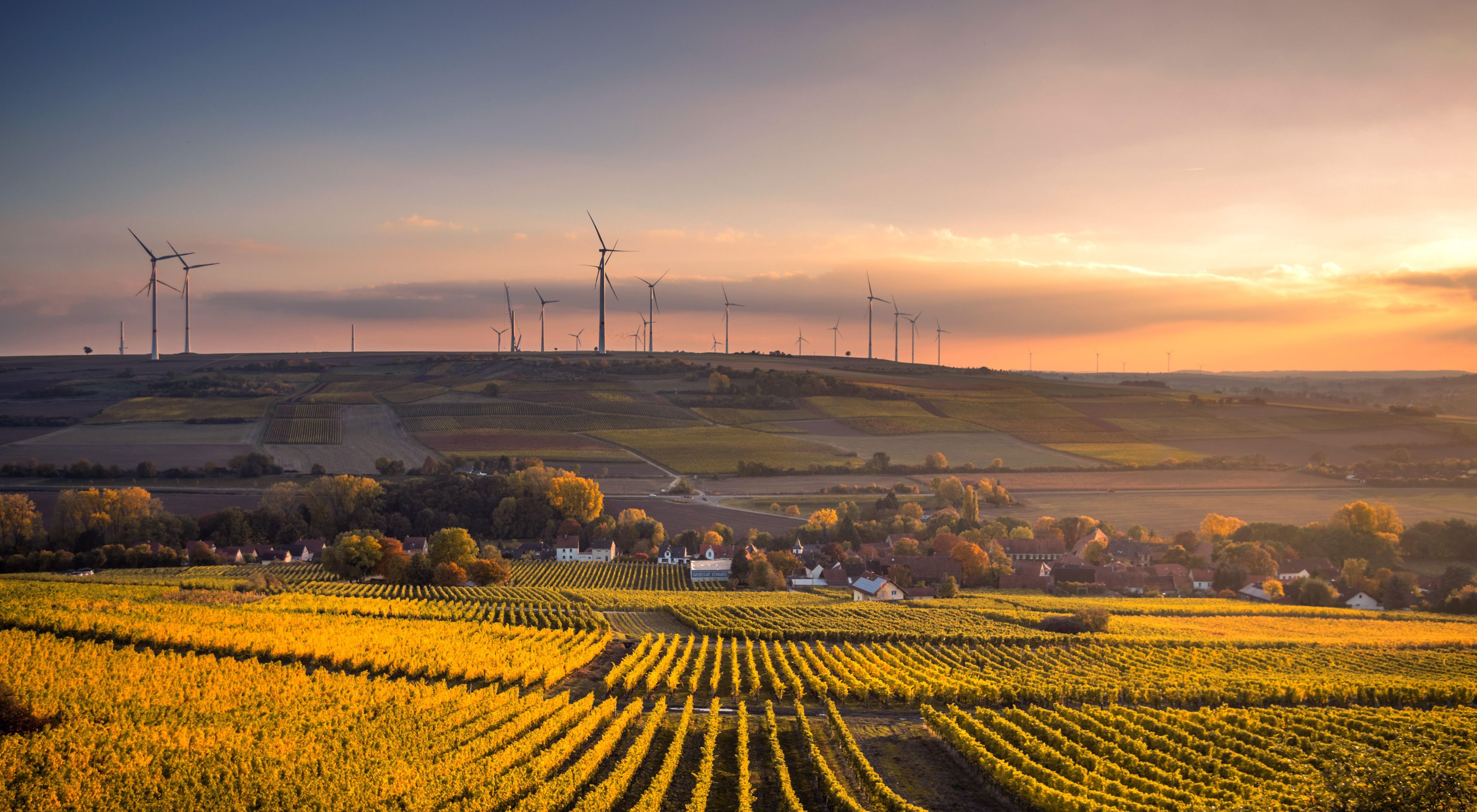 Agricultural fields and wind turbines in the sunset.