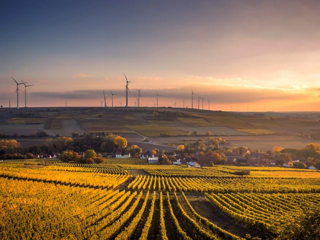 Rolling farm fields at sunset with wind turbines in the background.