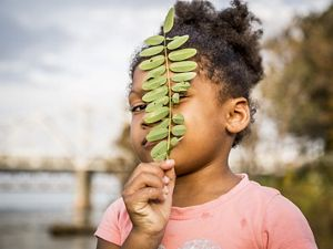 Young girl looks through a sprig of leaves.