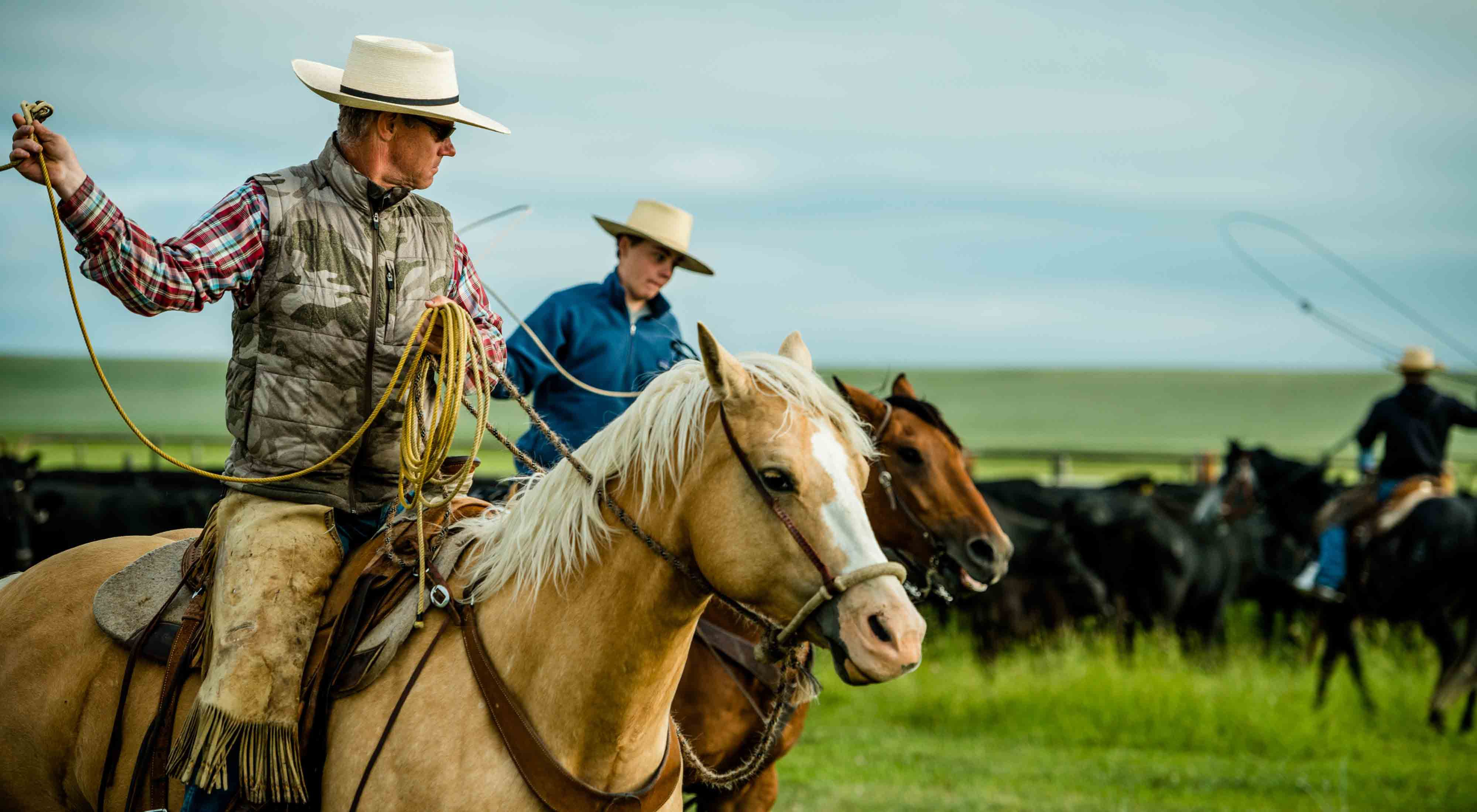 Local ranchers protecting the Rocky Mountain Front