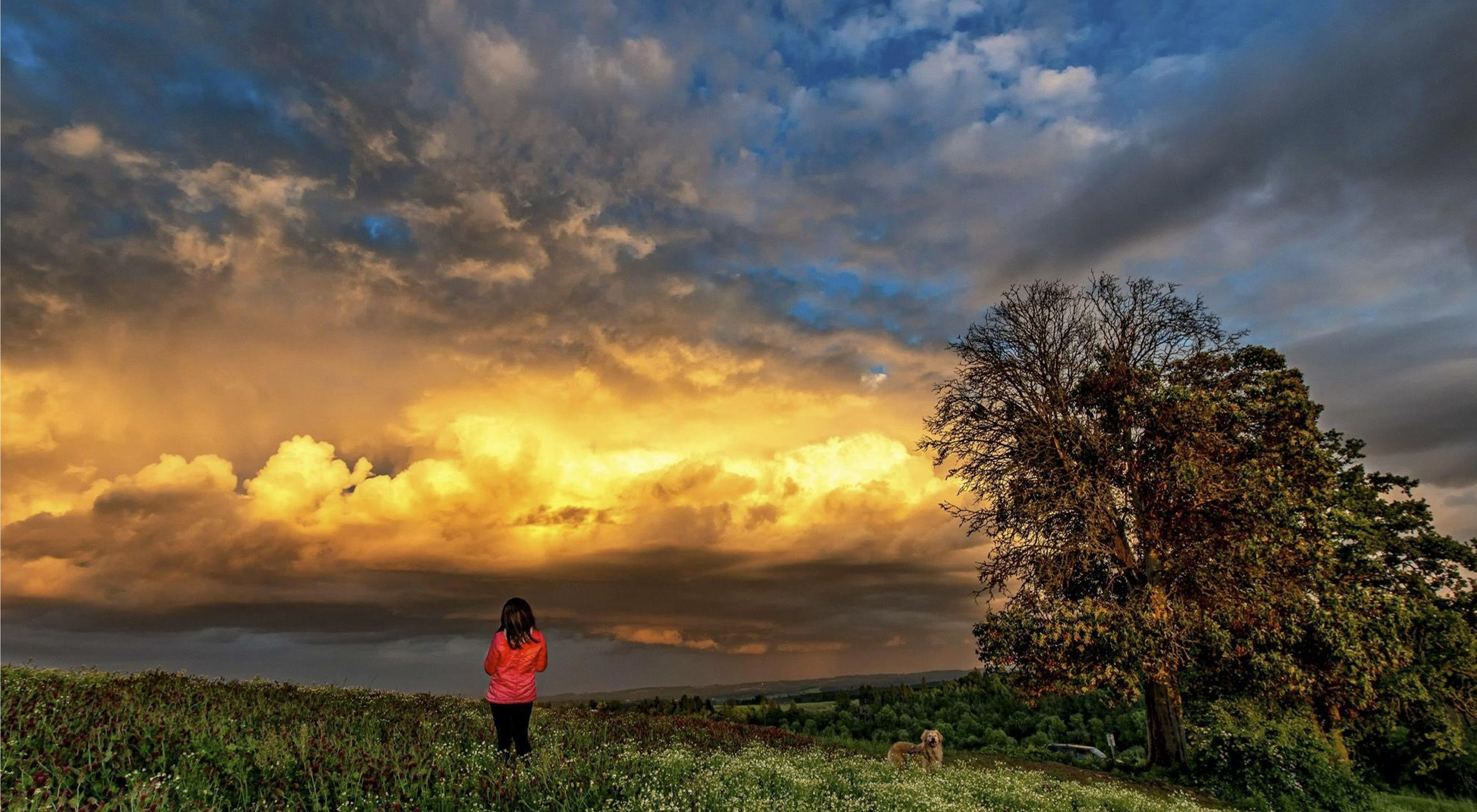A woman stands on a hillside looking out at dramatically lit thunderclouds in the distance.