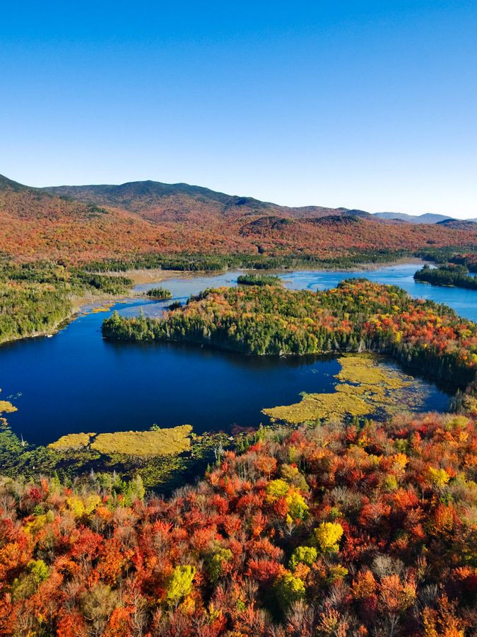 Aerial view of fall-colored forest with blue pond.