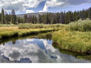 Freshwater conservation in the High Divide Headwaters