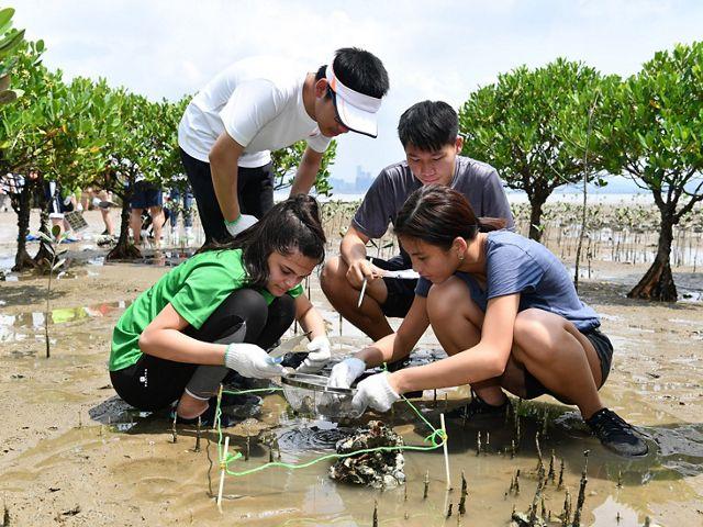 學生進行實地考察工作,與香港多元的生態系統連繫。