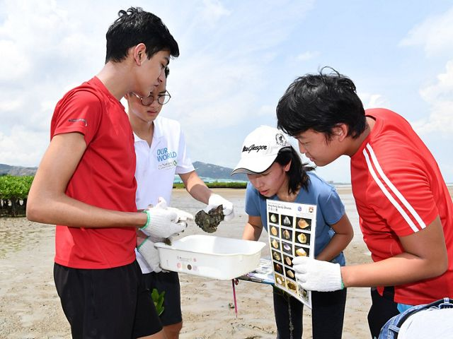 students identifying oysters and shellfish on a field trip to Hong Kong's mud flats.