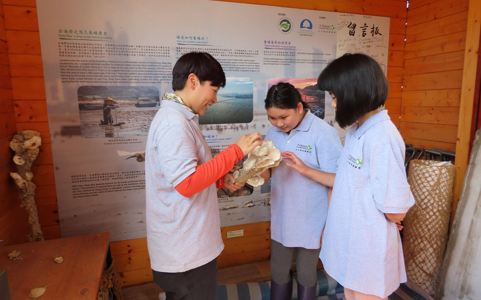 A group of young women study a cluster of oyster shells inside the exhibit.