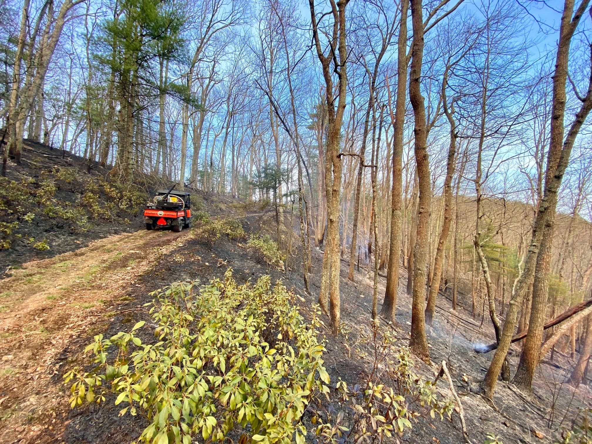 A small red fire engine sit on a wide path cut along the side of a steep slope. The land on either side is darkened by a fire that has moved across the slope. Trees are still standing and unharmed.