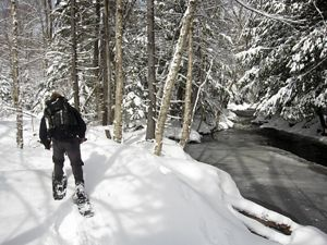 Trudging through Tug Hill Preserve with Snowshoes
